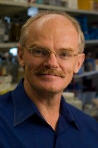 Photo of Dr. Anton Wellstein